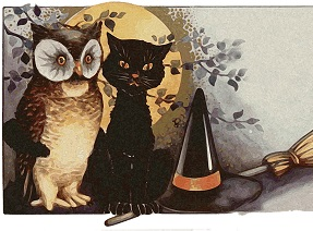 gatto e gufo