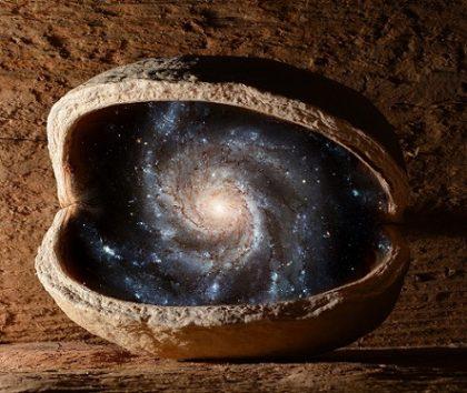 universo noce